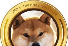 shiba-inu-dogecoin