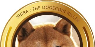 shiba-inu-dogecoin